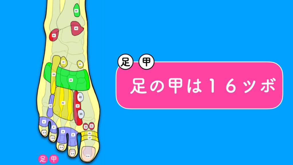 足の甲ツボは16箇所