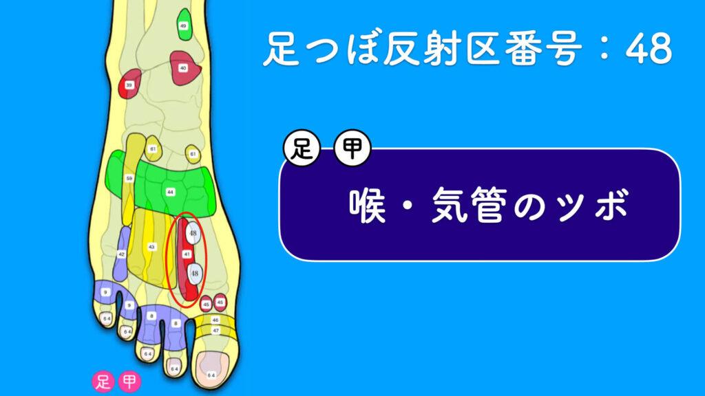 足の甲ツボ「喉・気管ツボ」